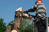 Ruislip Manor felling services