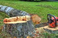 free Ruislip Manor tree felling quotes